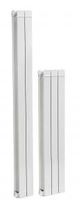 poza Radiatoare din aluminiu FERROLI TAL1000x2 elementi