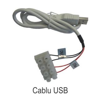 Poza Termostat ambiental cu radiofrecventa RF si WiFi FERROLI CONNECT - cablu USB